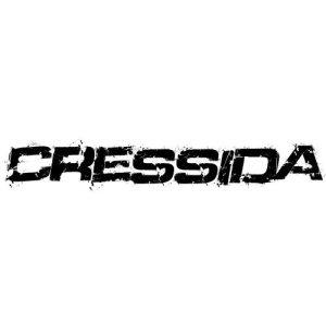In der Kategorie Toyota Cressida...