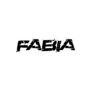 In der Kategorie Skoda Fabia findest...
