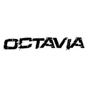 In der Kategorie Skoda Octavia...