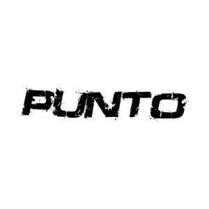 In der Kategorie Fiat Punto findest...