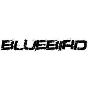 In der Kategorie Nissan Bluebird...