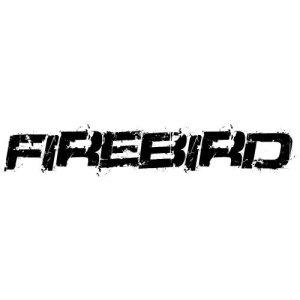 In der Kategorie Pontiac Firebird...