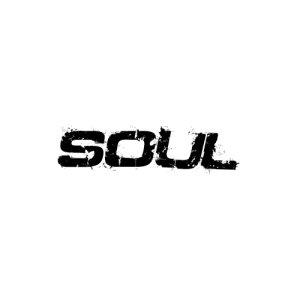 In der Kategorie Kia Soul findest du...