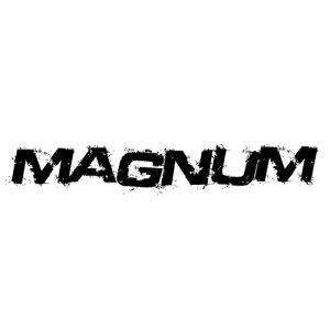 In der Kategorie Dodge Magnum findest...