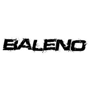 In der Kategorie Suzuki Baleno...