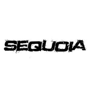 In der Kategorie Toyota Sequoia...