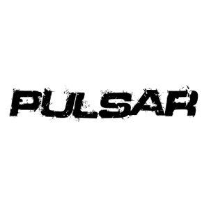In der Kategorie Nissan Pulsar...