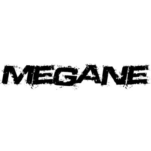 In der Kategorie Renault Megane...