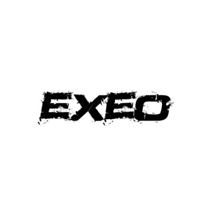 In der Kategorie Seat Exeo  findest...