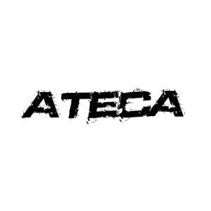 In der Kategorie Seat Ateca  findest...